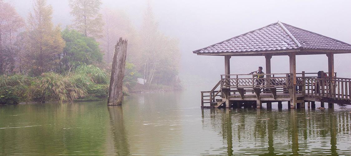 宜蘭『棲蘭神木園』 台灣世界遺產潛力點